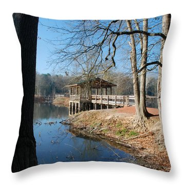 Brick Pond Park Throw Pillow