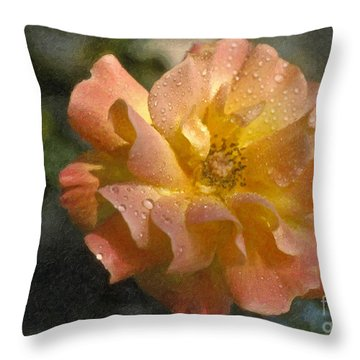 Throw Pillow featuring the photograph Bridal Pink Yellow Hybrid Tea Rose Genus Rosa by David Zanzinger