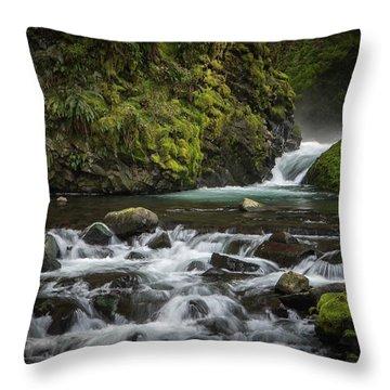 Bridal Veil Creek Throw Pillow by Joe Hudspeth