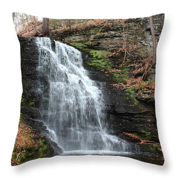 Throw Pillow featuring the photograph Bridal Veil Falls by Linda Sannuti