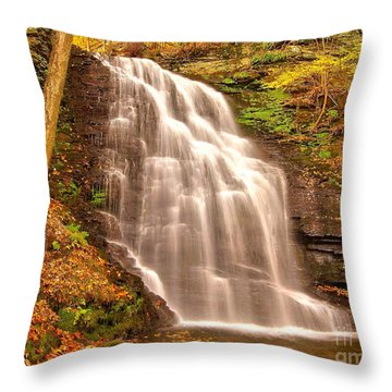 Bridal Veil Falls Throw Pillow by Nick Zelinsky