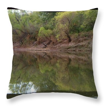 Throw Pillow featuring the photograph Bridge Frame by Betty Northcutt