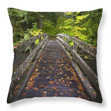 Bridge In A Park Throw Pillow by Craig Tuttle