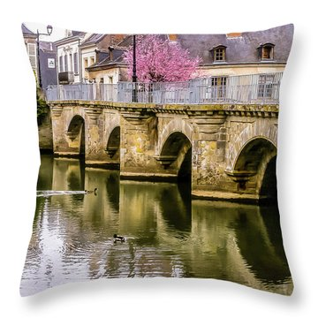Bridge In The Loir Valley, France Throw Pillow