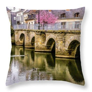 Bridge In The Loir Valley, France Throw Pillow