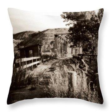 Bridge Throw Pillow by Marcin and Dawid Witukiewicz