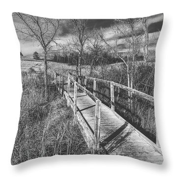 Bridge On The Prairie Throw Pillow