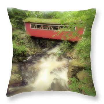 Bridge Over Troubled Water Throw Pillow by Karol Livote