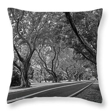 Bridge Road West II Throw Pillow by Larry Nieland