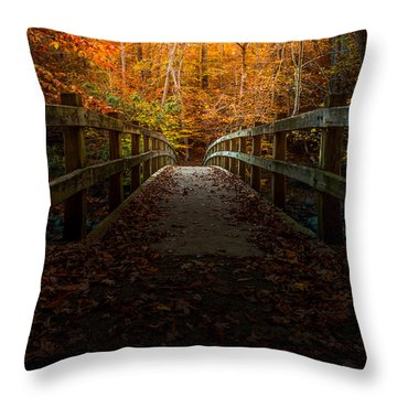 Bridge To Enlightenment Throw Pillow