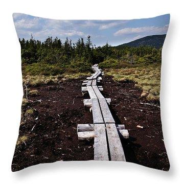 Bridge To Mizpah Throw Pillow