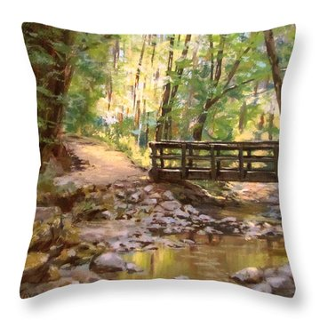 Bridge To The Falls Throw Pillow by Karen Ilari