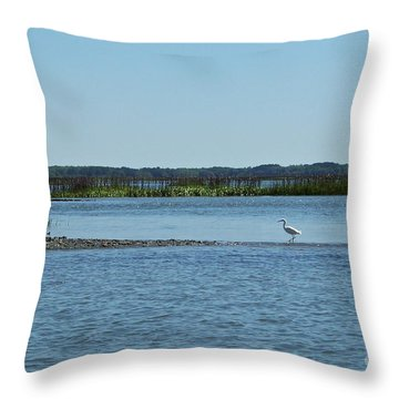 Throw Pillow featuring the photograph Bridging The Gap by Carol  Bradley