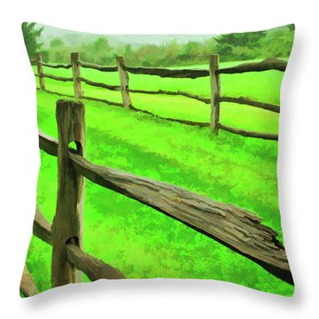 Bridle Trail Throw Pillow