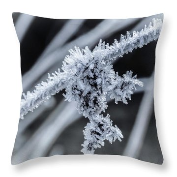 Briefly Beautiful Throw Pillow