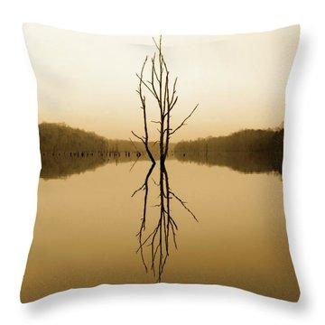Throw Pillow featuring the photograph Briery Creek  by Alan Raasch