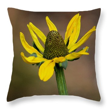 Bright And Shining Throw Pillow by Deborah  Crew-Johnson