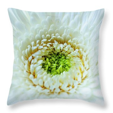 Throw Pillow featuring the photograph Bright As A Lime by Christi Kraft