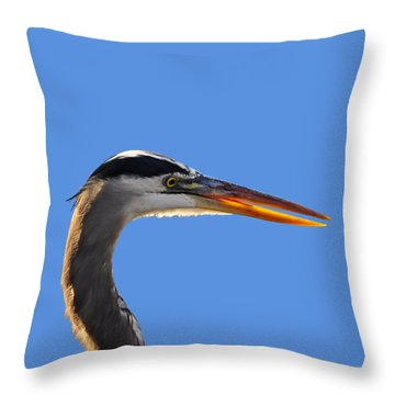 Throw Pillow featuring the photograph Bright Beak Blue .png by Al Powell Photography USA
