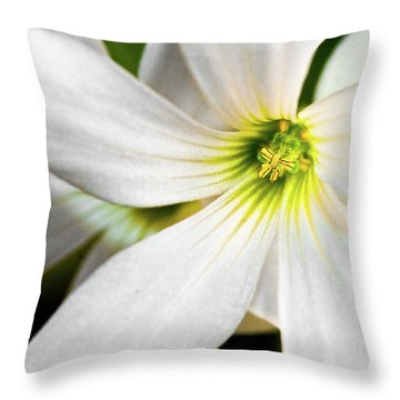 Bright Center Throw Pillow by Christopher Holmes