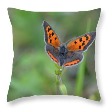 Bright Copper Throw Pillow
