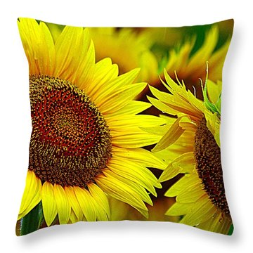 Bright Days Ahead Throw Pillow
