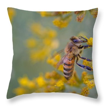 Bright Eyed Bee Throw Pillow