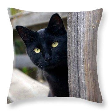 Bright Eyed Kitty Throw Pillow