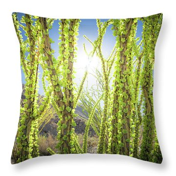 Bright Light In The Desert Throw Pillow