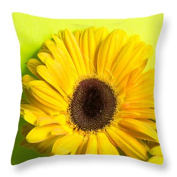 Bright Ones Throw Pillow