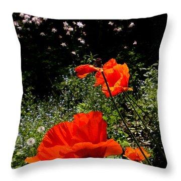 Bright Orange Throw Pillow by Renate Nadi Wesley