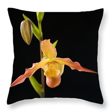 Bright Orchid Throw Pillow by Ron Dahlquist - Printscapes
