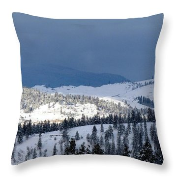 Throw Pillow featuring the photograph Bright Patch Of Sunshine by Will Borden