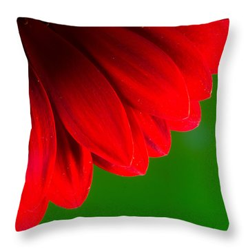 Bright Red Chrysanthemum Flower Petals And Stamen Throw Pillow