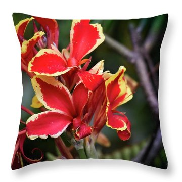 Throw Pillow featuring the photograph Bright Spot In My Day by Mary Machare