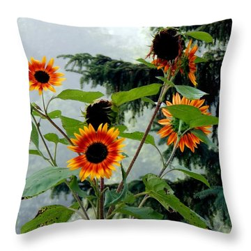 Bright Spots On A Foggy Morning Throw Pillow