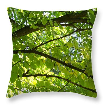 Bright Treetop  Throw Pillow
