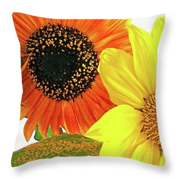 Bright Trio Throw Pillow by Kathy Bassett