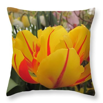 Bright Tulip Throw Pillow by MTBobbins Photography