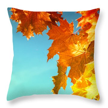 The Lord Of Autumnal Change Throw Pillow