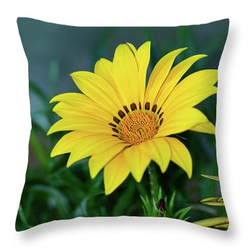 Throw Pillow featuring the photograph Bright Yellow Gazania By Kaye Menner by Kaye Menner