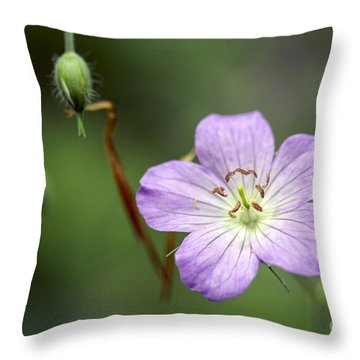 Brighten Your Corner Throw Pillow