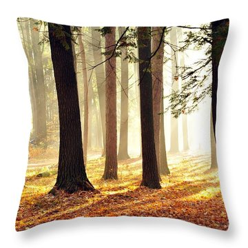 Brighter Future Throw Pillow