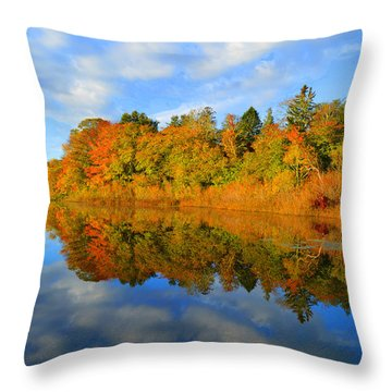 Brilliance Of Autumn Throw Pillow by Dianne Cowen