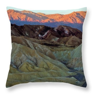 Brilliant And Subdued Throw Pillow