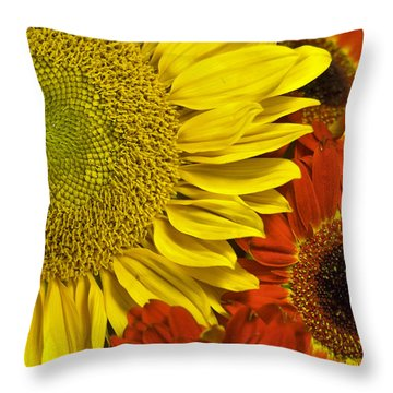 Brilliant Autumn Throw Pillow by Elsa Marie Santoro