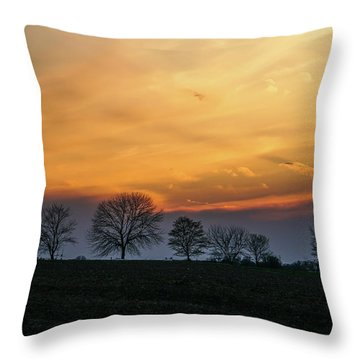Brilliant Canopy Throw Pillow