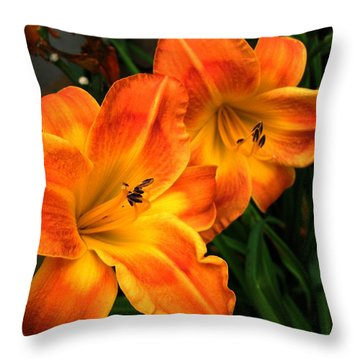 Brilliant Throw Pillow by Carol Sweetwood