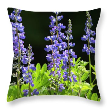 Throw Pillow featuring the photograph Brilliant Lupines by Elvira Butler