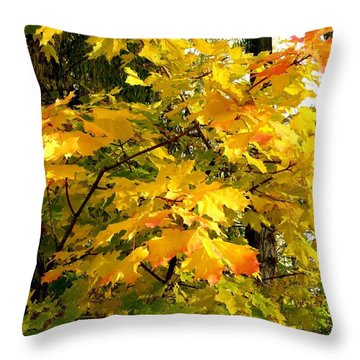 Throw Pillow featuring the photograph Brilliant Maple Leaves by Will Borden